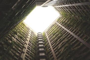 יוזמה ממשלתית לעידוד הקמה של דיור להשכרה לטווח ארוך